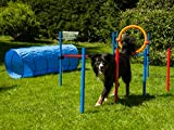 Agility Set für Hunde, Trainings-Set mit Hürde, Sprungring, Stangen und Tunnel