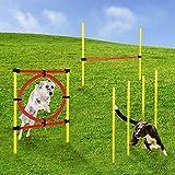 Momex Agility Set Hunde Training Hundesport mit Hürden und Slalom