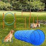 X XBEN Agility Ausrüstungs Set für Hunde, Hindernisse mit Hundetunnel, geflochtene Stangen, Springring, Hürdenstange, verstellbare Höhe, konische Fässer, 3 Verschiedene Kombinationen für mehr Spaß